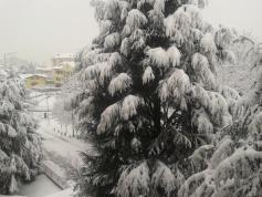 winterita2